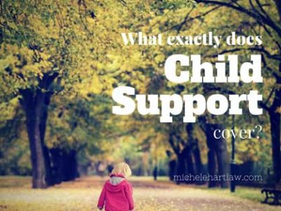 What exactly does child support cover