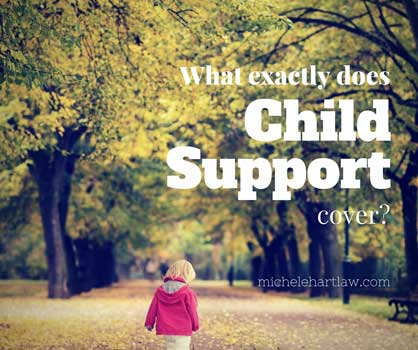 What Exactly Does Child Support Cover?